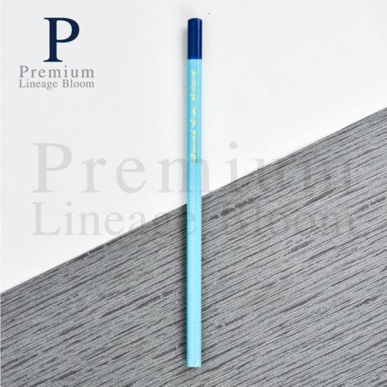 ดินสอไม้ โลโก้ ไรซ์ไทยแลนด์