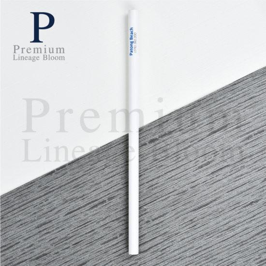 ดินสอไม้ โลโก้ Best Western Patong Beach